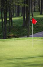 Golf Management